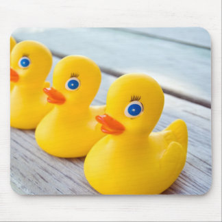 Get Your Ducks In A Row Mouse Mat