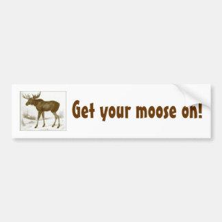 Get your moose on-bumper sticker