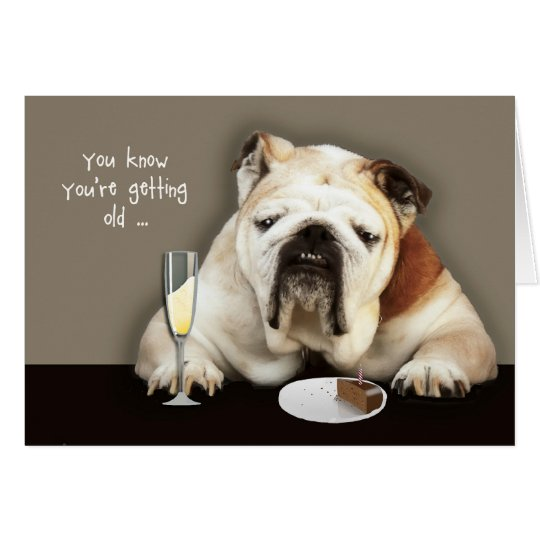 getting older, funny birthday card, dog card