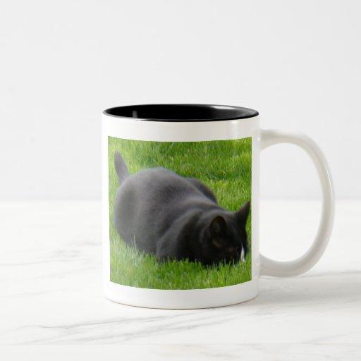 Getting ready to pounce mug