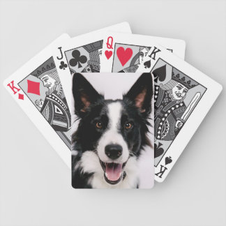 Getty Images | A Smiling Border Collie Bicycle Playing Cards