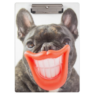 Getty Images | A Smiling Dog Clipboard