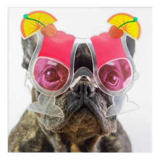 Getty Images | Dog With Cocktail Glasses Acrylic Print