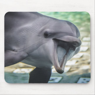 Getty Images | Dolphin Mouse Mat