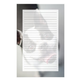 Getty Images | French Bulldog Stationery