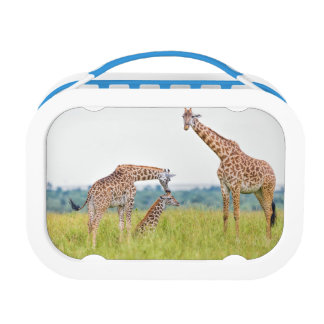 Getty Images | Giraffe Family Lunch Box