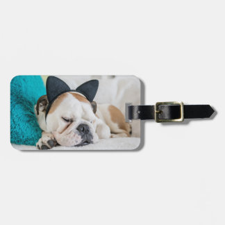 Getty Images | Sleepy Dog with Cat Headband Luggage Tag