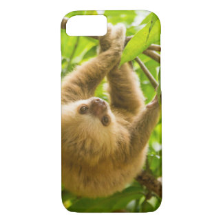 Getty Images | Upside Down Sloth iPhone 8/7 Case