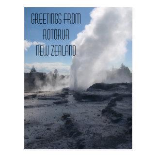 Geyser, Rotorua, New Zealand Postcard