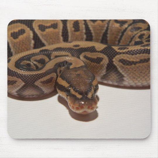 Ghost Ball Python Mousepad