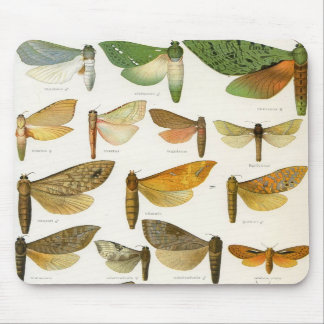 Ghost Moths Mouse Pads