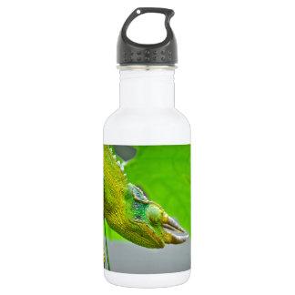 Giant 3 Horned Chameleon 532 Ml Water Bottle