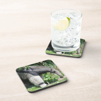 Giant Anteater Cork Coasters