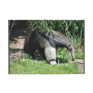 Giant Anteater Looking for Ants iPad Mini Case