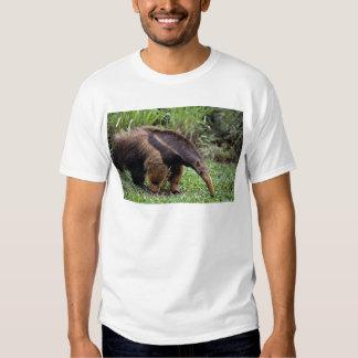 Giant anteater (Myrmecophaga tridactyla) T-shirts