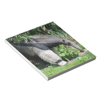 Giant Anteater Notepad