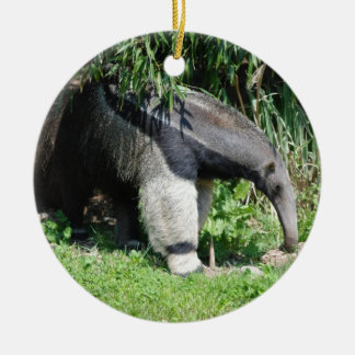 Giant Anteater Ornament