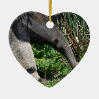 Giant Anteater Photo Ornament