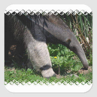 Giant Anteater Photo Sticker