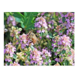 Giant Bee II Postcard
