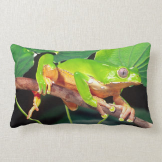 Giant Bicolor Monkey Treefrog, Phyllomedusa Lumbar Pillow
