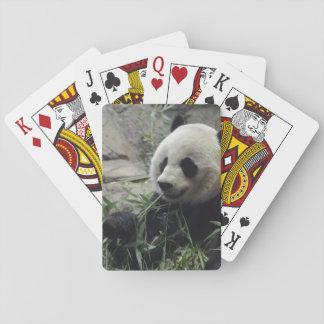 Giant Chinese Panda Bear Playing Cards
