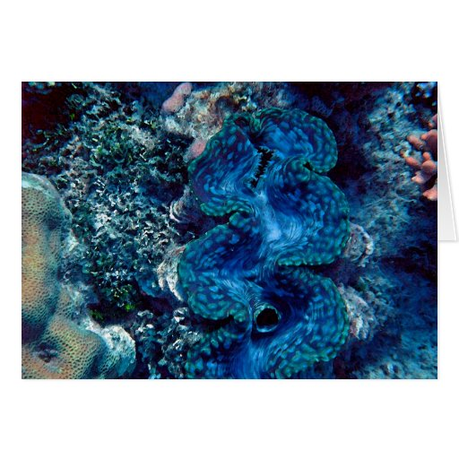 Giant Clam Greeting Card