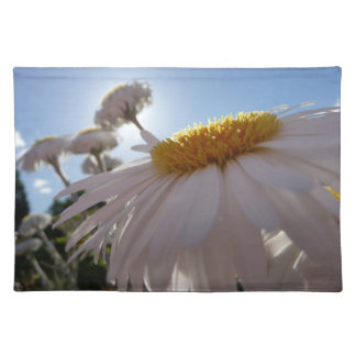 Giant daisy in the sun plate place mats