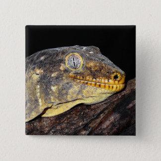 Giant geckos 15 cm square badge