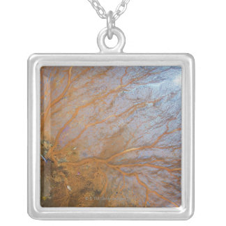 Giant gorgonian sea fan (Plexauridae sp.) Silver Plated Necklace
