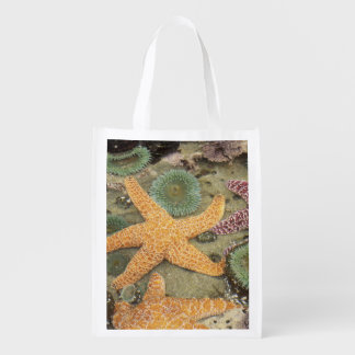 Giant green anemones and ochre sea stars reusable grocery bag