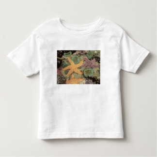 Giant green anemones and ochre sea stars toddler T-Shirt
