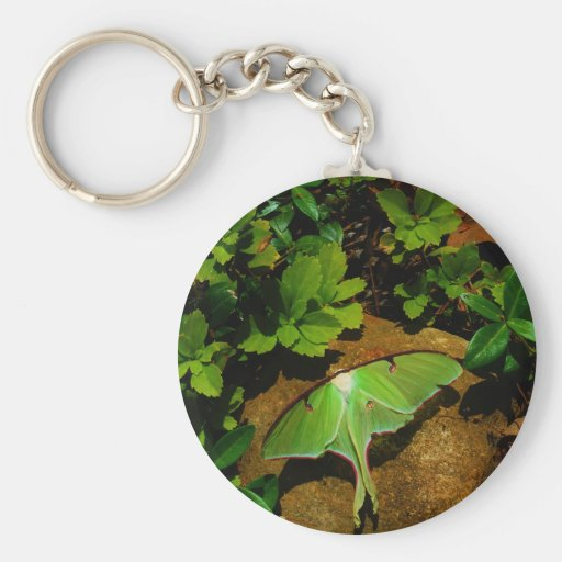 Giant Green Luna moth Key Chains