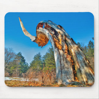 Giant Horn HDR (Old Tree Trunk) Mouse Pad