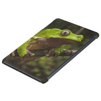 Giant leaf frog Phyllomedusa bicolor) iPad Mini Retina Cover