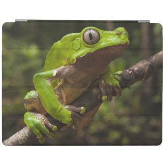 Giant leaf frog Phyllomedusa bicolor) iPad Cover