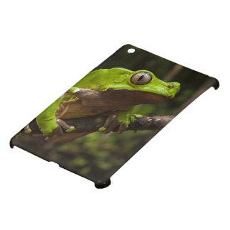 Giant leaf frog Phyllomedusa bicolor) iPad Mini Cover