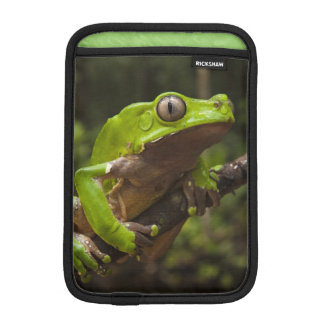 Giant leaf frog Phyllomedusa bicolor) iPad Mini Sleeve