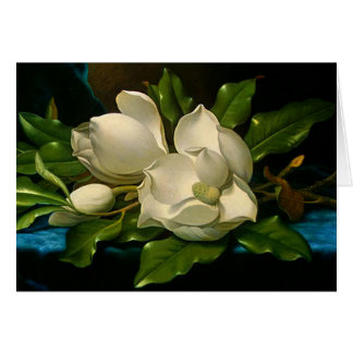 Giant Magnolias on a Blue Velvet Cloth Note Card