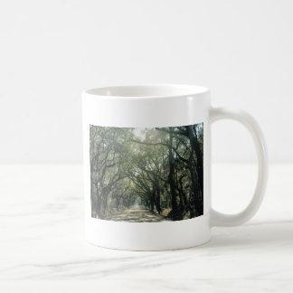 Giant Oak Trees Basic White Mug