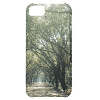 Giant Oak Trees iPhone 5C Case