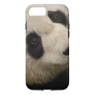 Giant panda (Ailuropoda melanoleuca) Family: 2 iPhone 8/7 Case