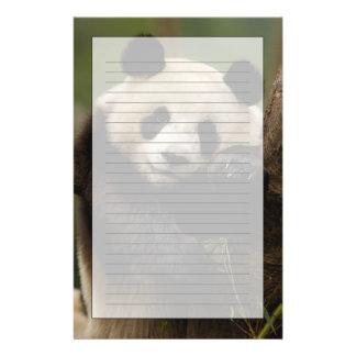 Giant panda Ailuropoda melanoleuca) Family: 4 Customised Stationery