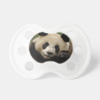 Giant panda Ailuropoda melanoleuca) Family: 4 Dummy