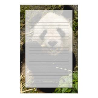 Giant panda Ailuropoda melanoleuca) Family: 5 Customised Stationery