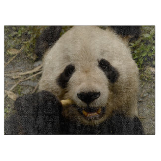 Giant panda Ailuropoda melanoleuca) Family: 5 Cutting Board