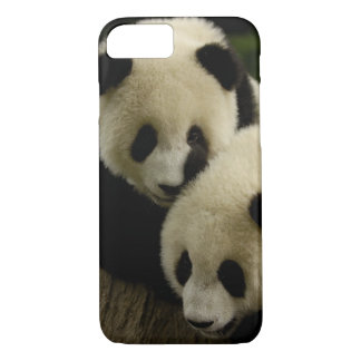 Giant panda (Ailuropoda melanoleuca) Family: 5 iPhone 8/7 Case