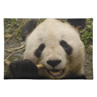 Giant panda Ailuropoda melanoleuca) Family: 5 Placemat