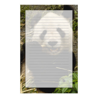 Giant panda Ailuropoda melanoleuca) Family: 5 Stationery