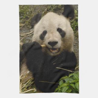 Giant panda Ailuropoda melanoleuca) Family: 5 Tea Towel